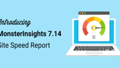 monsterinsights 7.14 release site speed report